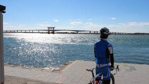 遠州・浜名湖の夏を遊びつくそう!夏におすすめのスポットとイベントをご紹介