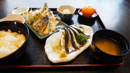 魚すず いわし定食