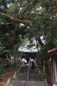 1_白山神社