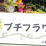 プチフラワー(生花店)