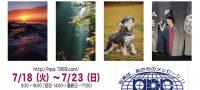 芸術的な写真に癒されたい!クリエート浜松で開催されている浜松フォトフェスティバル!
